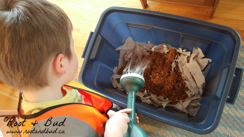 How to Build a Simple Home Worm Composter